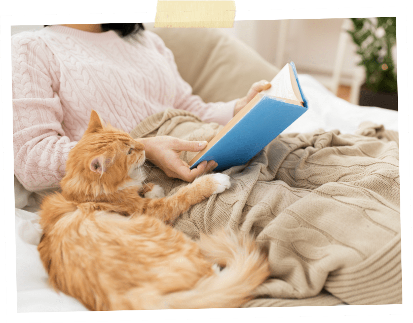 Woman sitting under a blanket and reading a book with companion cat at her side